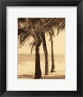 Framed Palm Beach II