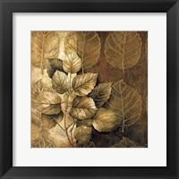 Framed Leaf Patterns III