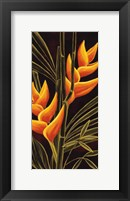 Framed Heliconia