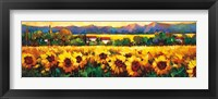 Framed Sweeping Fields of Sunflowers
