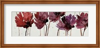 Framed Blushing Blooms