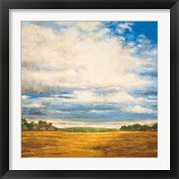Framed Tranquil Meadow