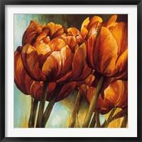 Framed Floral Radiance I