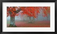 Framed Arboles Rojos