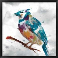 Framed Blue Jay