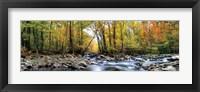 Framed Porters Creek