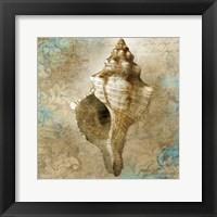 Framed Aquatic Allure