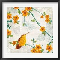 Framed Birds and Butterflies III