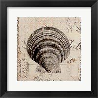 Framed Ocean Collection IV