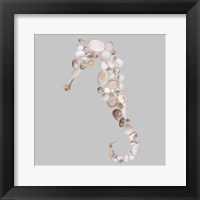 Framed Seahorse