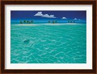 Framed Turtle Crossing