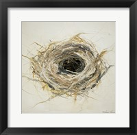 Framed Bird's Nest