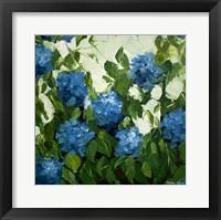 Framed Blue Hydrangeas