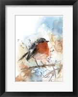 Framed Robin II