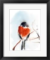 Framed Robin III