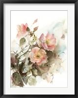 Framed Apricot Roses I