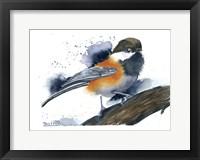 Framed Chickadee II