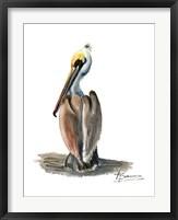 Framed Beach Bird
