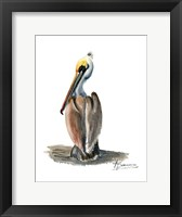 Framed Beach Bird