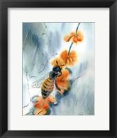 Framed Bee III