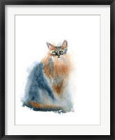 Framed Ginger Cat II