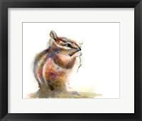 Framed Nibbler