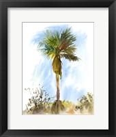 Framed Palm Tree