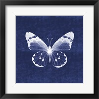 Framed White Butterfly I