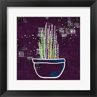 Framed Purple Snake Plant