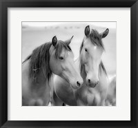 Framed Horse Friends