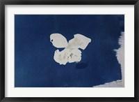 Framed Blue IV