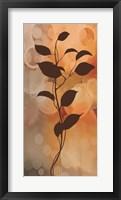 Framed Flora II