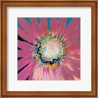 Framed Sunshine Flower III