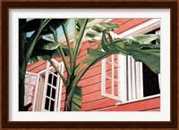 Framed Tropical Breeze
