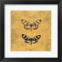 Framed Pair of Butterflies on Gold