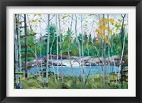 Framed Oxtounge Rapids