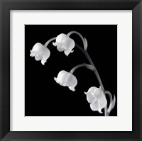 Framed Spring Bells I