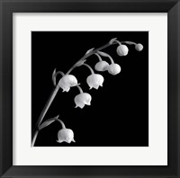 Framed Spring Bells II