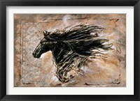 Framed Black Beauty