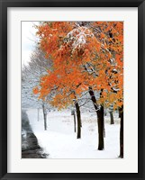 Framed SnowFall III