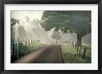 Framed Misty