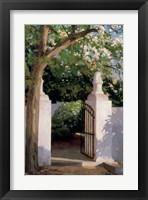 Framed Acacia