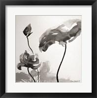 Framed Lotus Flowers II