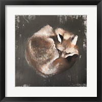Framed Sleeping Fox No. 11