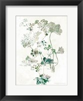 Framed Geranium Botanical