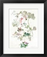 Framed Boho Geranium Botanical