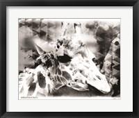 Framed Modern Black & White Giraffe