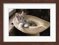Framed Hat Kitten