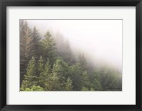 Framed Alaska Green Trees I