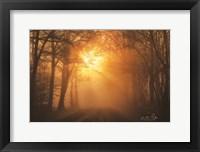 Framed Misty Sunrise